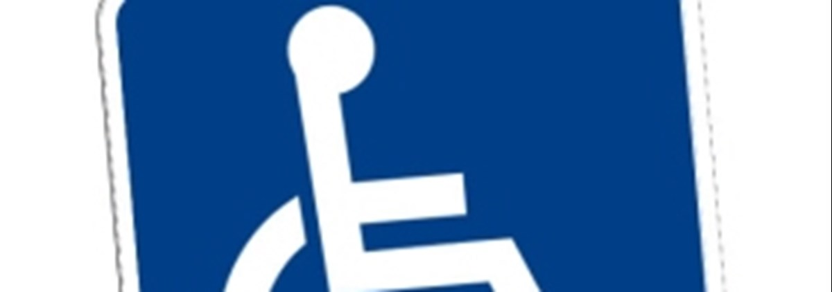 Disabled Badge Icon