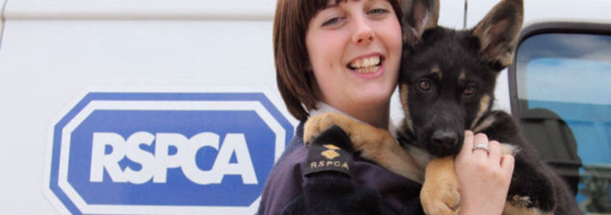 RSPCA staff and dog